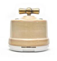 Выключатель 1-кл (проходной) OP11GD 2-х позиционный для наружного монтажа, бежевый