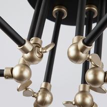 Потолочная люстра Eurosvet Nigella 70052-6 Black/Gold